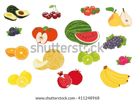 Vector illustration fruits