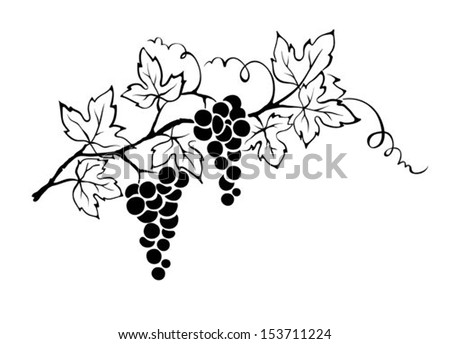 Hand Drawn Vector Rural Landscape Lodge 482733967 in addition Italian wine posters moreover 315674255102986216 besides Search also Landscape sketch. on italian vineyards tuscany art