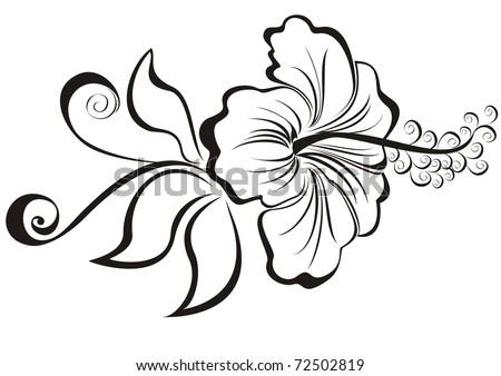 vector illustration hibiscus - stock vector
