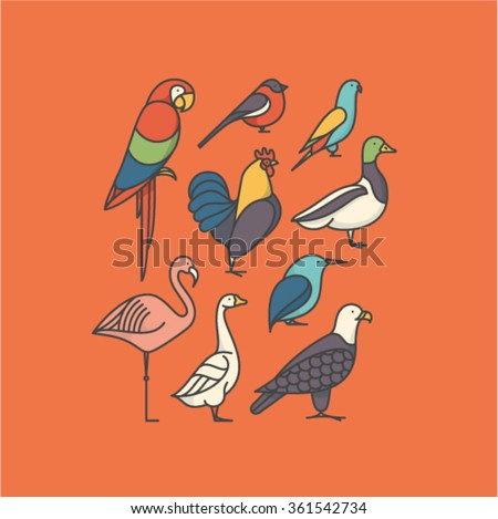 Vector illustration icon set of bird: macaw, bullfinch, parrot, rooster, duck, flamingo, goose, kingfisher, eagle - stock vector