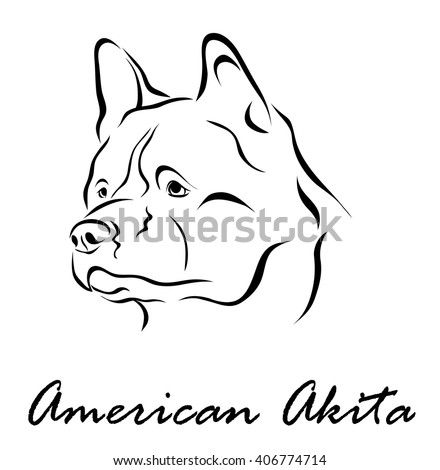Vector illustration. Illustration shows a dog breed American Akita