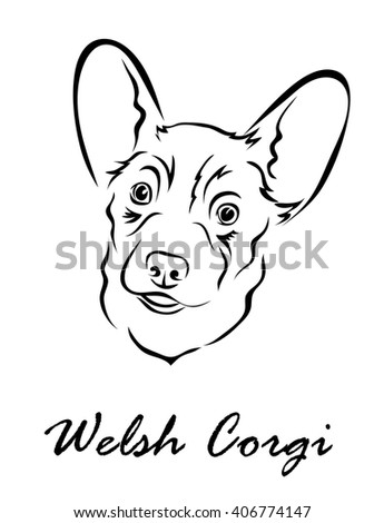 Vector illustration. Illustration shows a dog breed Welsh Corgi
