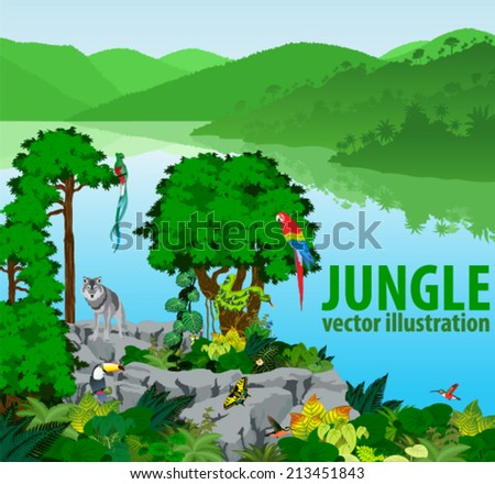 Vector Illustration Lake in Jungle Rainforest with Frog, Toucan, quetzal, humming-birds and Ara and Wolf