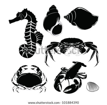 Vector Illustration: Marine life - stock vector