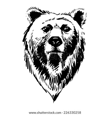 Bear Face Stock Images, Royalty-Free Images & Vectors ... Bear Face Drawing