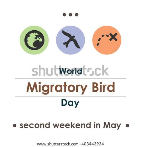 vector illustration / migratory bird day - stock vector