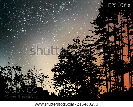 Vector illustration - night sky with stars and milky way  - stock vector