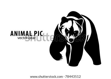 vector illustration of a bear on white background - stock vector