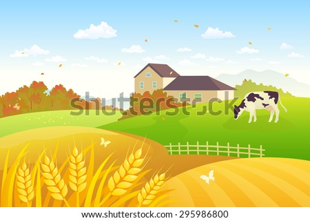 Vector illustration of a beautiful fall countryside scene with a grazing cow and wheat fields - stock vector