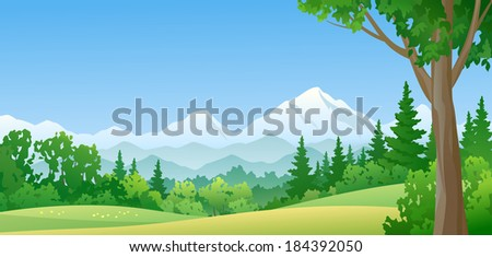 Vector illustration of a beautiful green mountain forest - stock vector