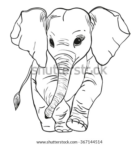 Vector illustration of a black outline of an elephant coming forward  - stock vector