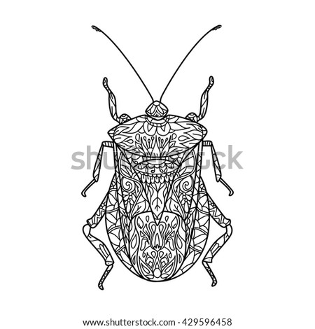 Beetle Insect Species Isolated Engraved Hand Stock Vector