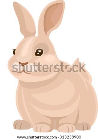 Vector Illustration of a Cute Rabbit - stock vector