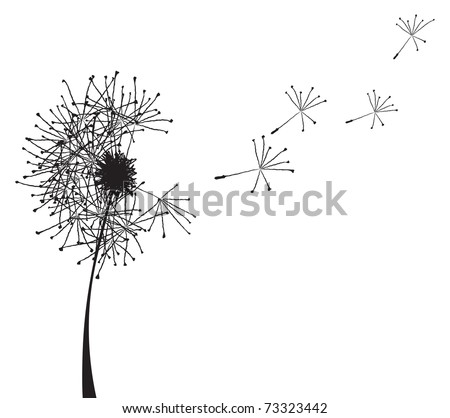 Vector illustration of a dandelion outline loosing its fuzzes - stock vector