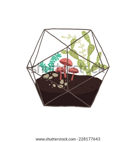 Vector illustration of a glass terrarium with plants