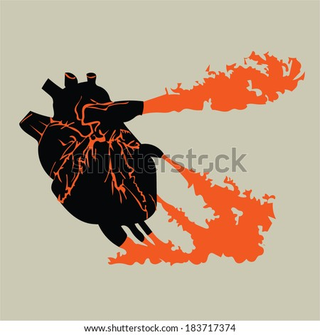 Vector illustration of a Human Heart isolated - stock vector