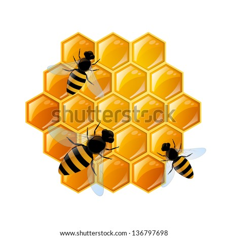 Vector Illustration of a Natural Background with Honeycombs and Bees - stock vector