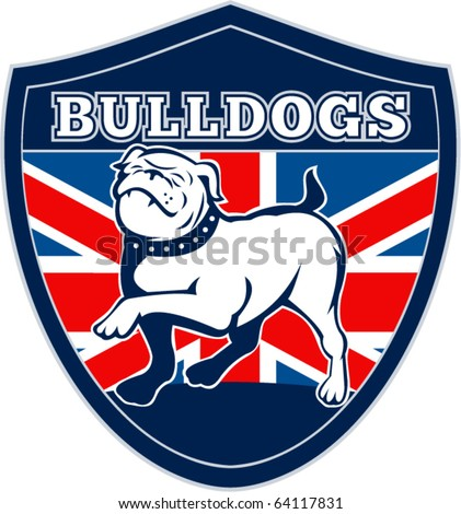"vector illustration of a Proud English bulldog marching with Great Britain or British flag in background set inside a shield with words ""bulldogs"" suitable for any sports team mascot"