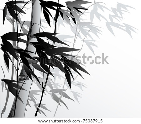vector illustration of a serene bamboo background