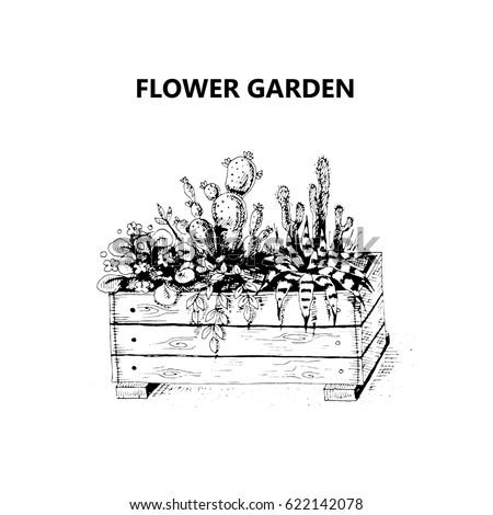 Vector illustration of a sketch on the theme of gardening. Wooden box with flowers. Black and white free-hand sketch. Isolated on white background