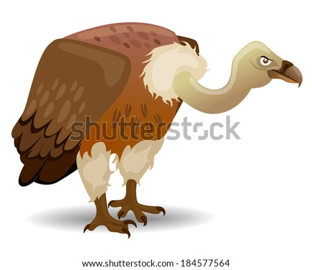 Vector illustration of a Vulture - stock vector