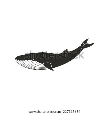 Humpback Whale Stock Vectors & Vector Clip Art   Shutterstock