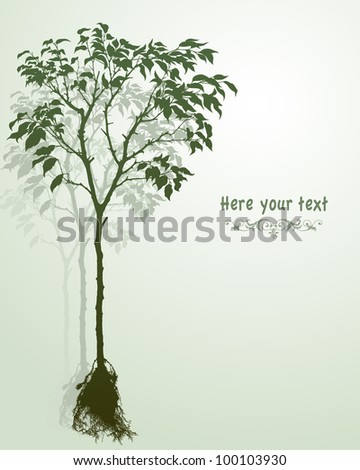 Vector illustration of a young tree with roots. Adobe Illustrator 8.