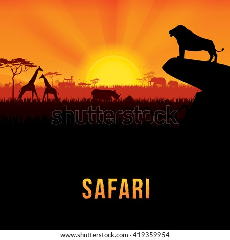 Vector illustration of Africa landscape with African lion standing on rock and sunset background. Safari theme - stock vector
