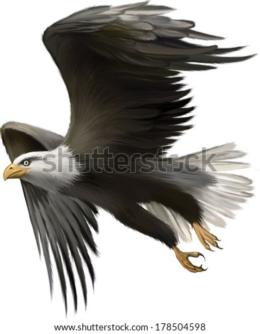Vector illustration of american bald eagle in flight isolated on white background - stock vector