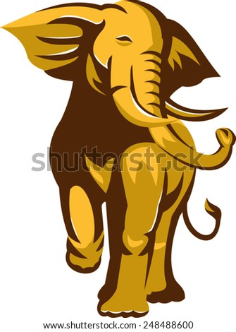 vector illustration of an african bull elephant charging facing front on isolated white background  done in retro style.
