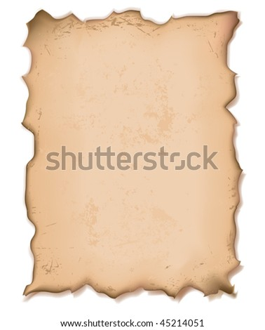vector illustration of an old torn paper with grainy texture