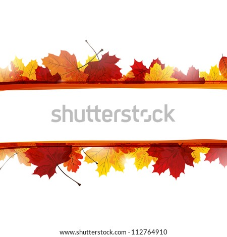 Vector Illustration of Autumn Leaves - stock vector