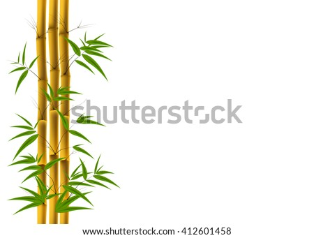 Vector illustration of Bamboo background with copyspace