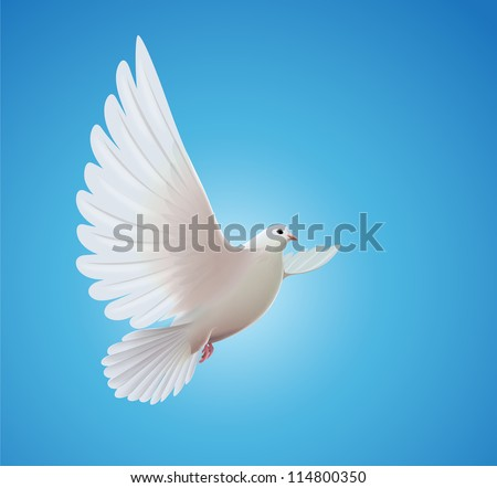 Vector illustration of beautiful shiny white dove flying way up in a blue sky - stock vector