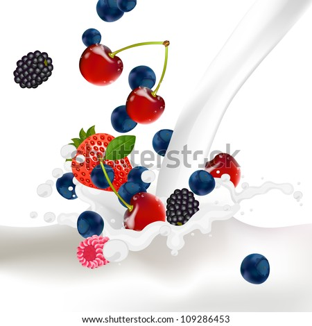 Vector Illustration of Berries falling into a Splash of Milk