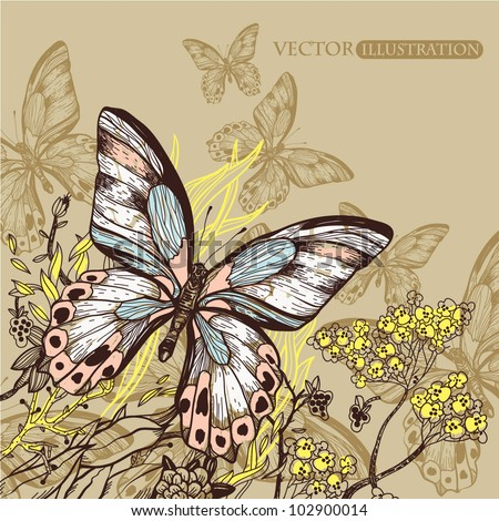 vector illustration of  butterflies  with plants and flowers - stock vector
