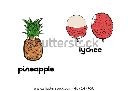 Vector illustration of cartoon pineapple and lychee