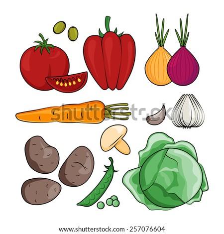 Vector illustration of cartoon vegetables. Vegetarian set - stock vector