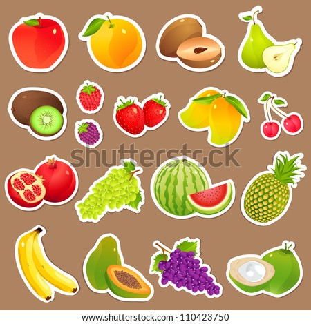 vector illustration of collection of various