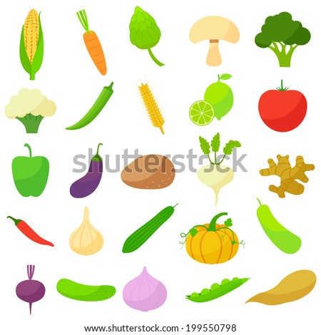 vector illustration of collection of vegetables - stock vector