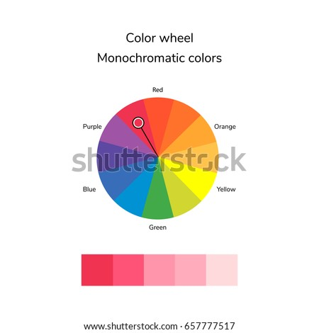 vector illustration of color circle, infographics, palette, monochromatic  color