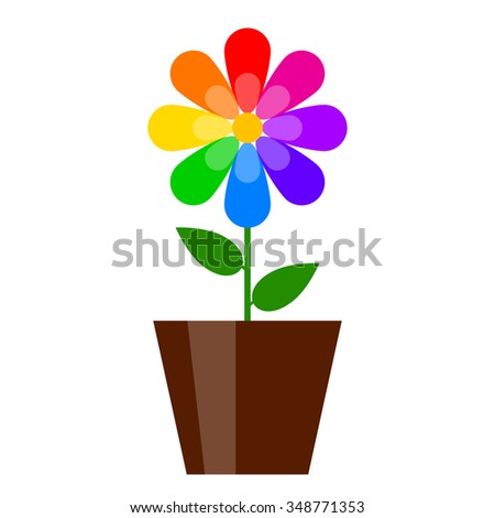 Vector illustration of colorful flower in pot