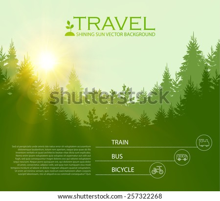 Vector illustration of Coniferous Forest. Travel infographic. Vector illustration - stock vector