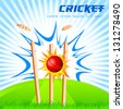 vector illustration of cricket ball hitting stumps - stock vector