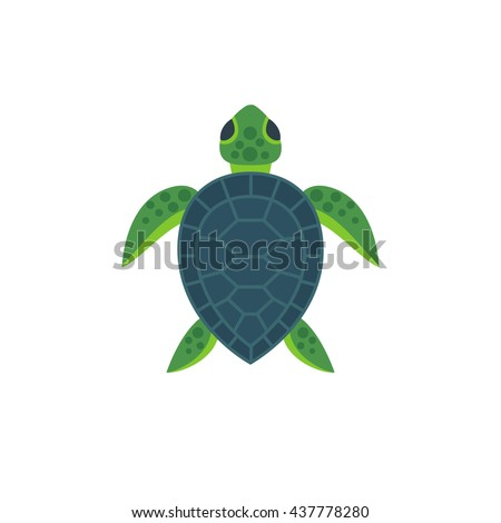 vector illustration cute flat sea turtle stock vector 437778280 rh shutterstock com Sea Turtle Illustration Colorful Sea Turtles