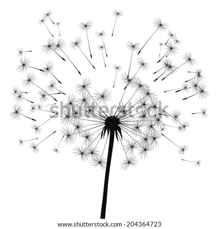 vector illustration of dandelion