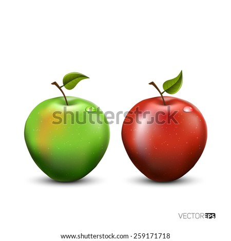 Vector illustration of detailed big shiny green and red apple - stock vector