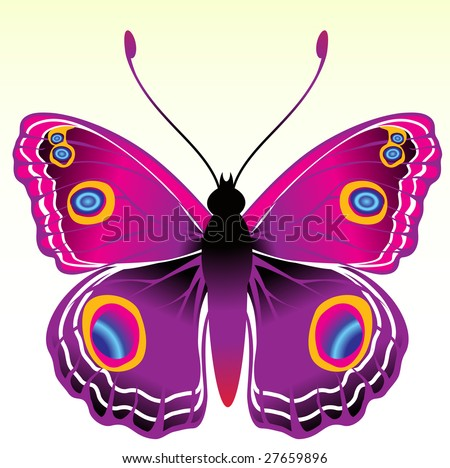 Vector Illustration of detailed Brightly coloured butterfly. - stock vector