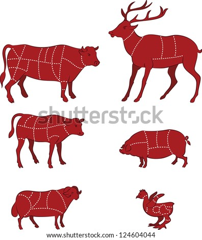vector illustration of  diagram guide for cutting meat - stock vector