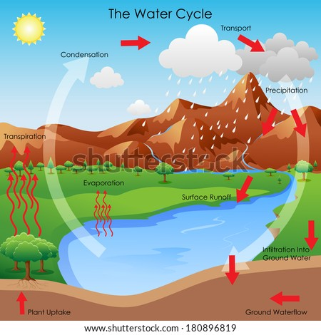 vector illustration diagram showing water cycle stock. Black Bedroom Furniture Sets. Home Design Ideas